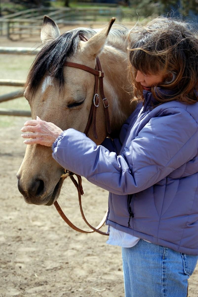Stosowanie pomocy jeździeckich