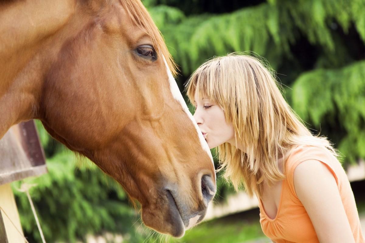 W jaki sposób dbać o zdrowie konia?
